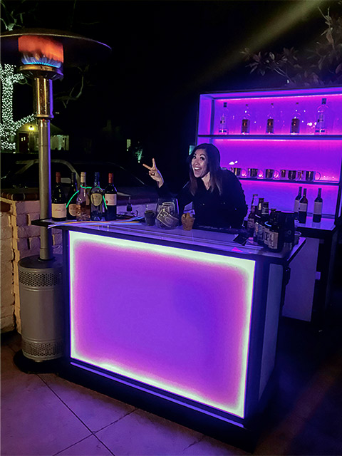 About Town Bartending Party with Ultimate Bars LED light up Event Bars Wheels